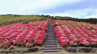 菅無田公園2.jpg