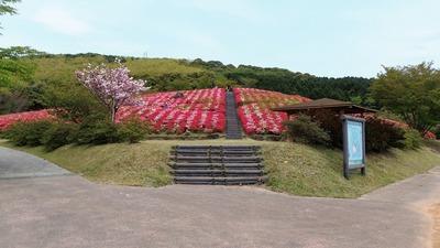 菅無田公園3.jpg