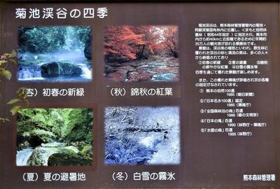 菊池渓谷の四季.jpg