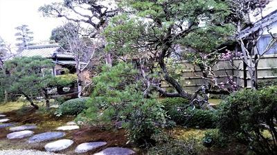 菊谷家住宅庭園2.jpg