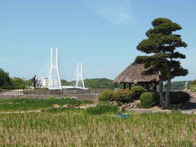 菖蒲園と白鳥大橋.jpg