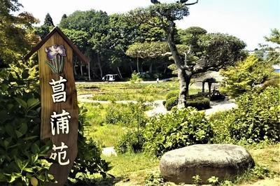 菖蒲苑.jpg