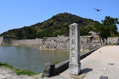 萩城址と内堀.jpg