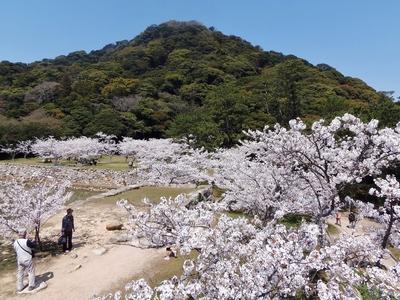 萩城天守閣跡からの眺望1.jpg