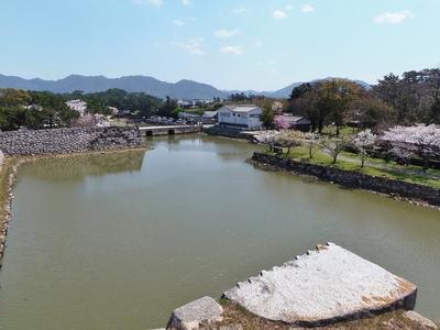 萩城天守閣跡からの眺望2.jpg