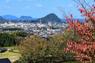 萩市街地と木々の秋色.jpg