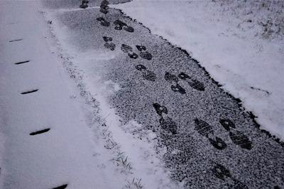薄っすら雪化粧1.jpg