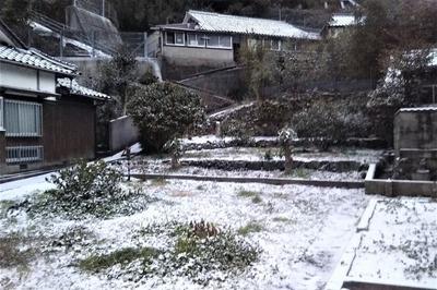 薄っすら雪化粧3.jpg