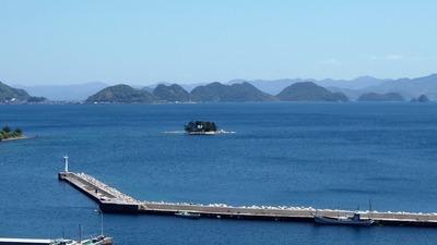 薬師山からの眺望.jpg