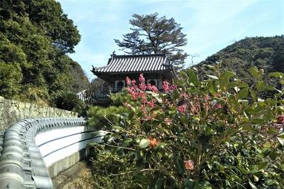 西園寺山門と季節の花2.jpg