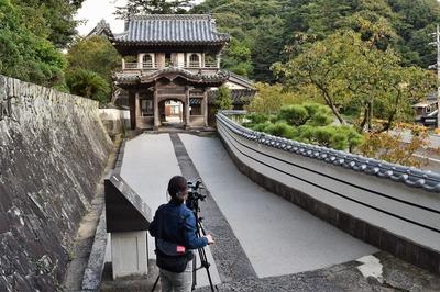 西圓寺山門と今が旬の柿取材1.jpg
