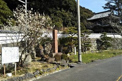 西圓寺山門と季節の花.jpg