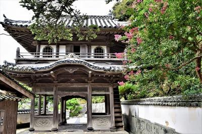 西圓寺山門と百日紅.jpg