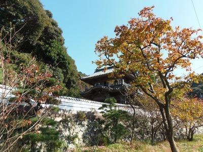西圓寺山門と秋色1.jpg