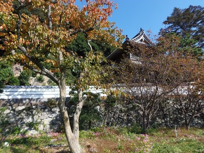 西圓寺山門と秋色2.jpg