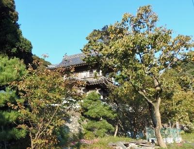 西圓寺山門の秋色5.10.12.jpg
