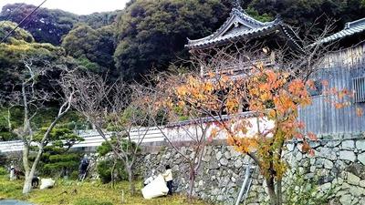 西圓寺清掃2.jpg