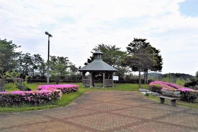 請川公園2.jpg