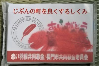 赤い羽根共同募金2.jpg