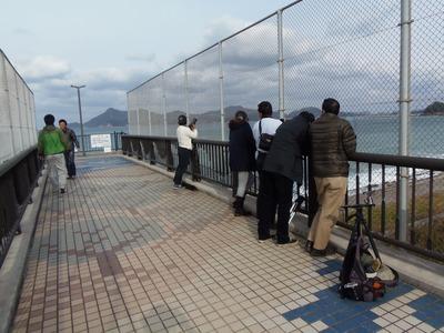 跨線橋上の撮り鉄.jpg