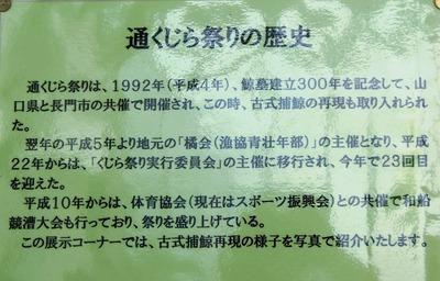 通くじら祭りの歴史.jpg