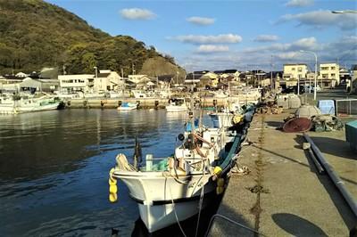 通漁港4.jpg