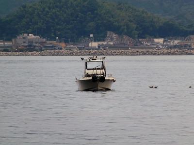 遊漁船1.jpg