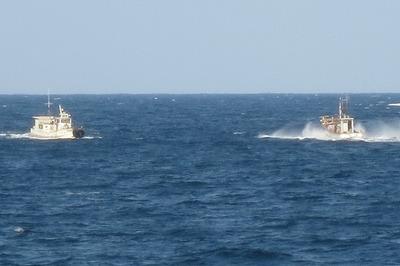 遊漁船と漁船1.jpg