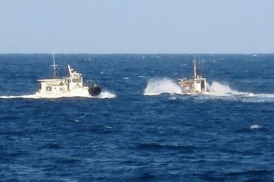 遊漁船と漁船2.jpg