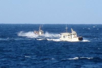 遊漁船と漁船3.jpg