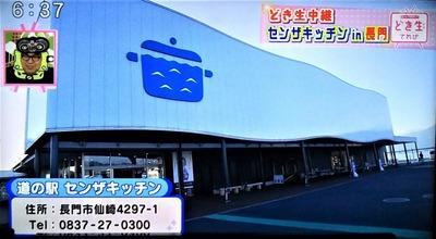 道の駅センザキッチン.jpg