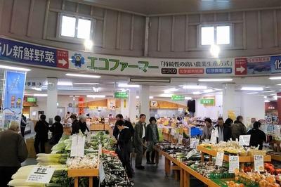 道の駅七城メロンドーム2.jpg