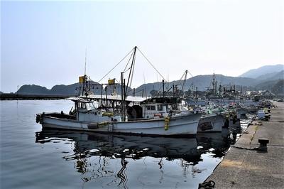 野波瀬漁港3.jpg