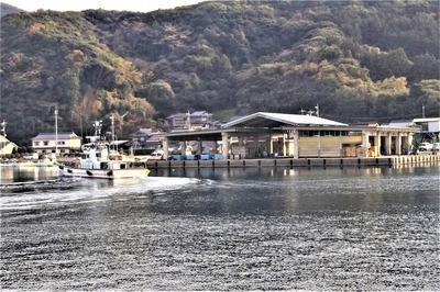 野波瀬魚市場.jpg