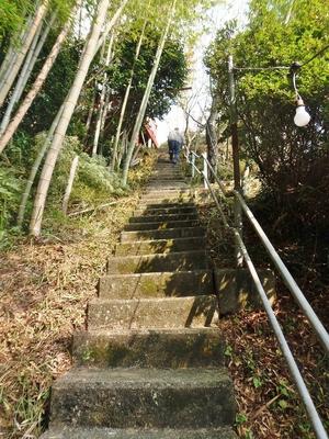 金毘羅宮への階段.jpg