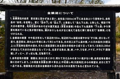 金鱗湖の説明.jpg