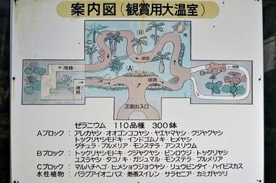 鑑賞用大温室案内図.jpg