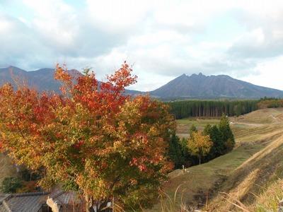阿蘇山と紅葉2.jpg