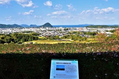陶芸の村公園展望広場からの眺望.jpg