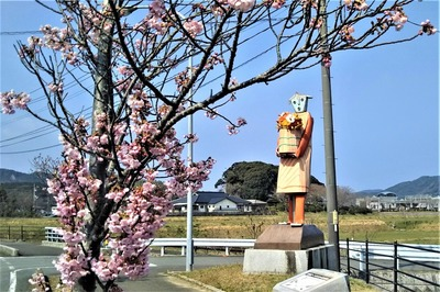 陽光桜1.jpg