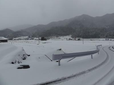 雪化粧の半田地区2.jpg