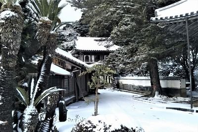 雪化粧の西園寺山門2.jpg