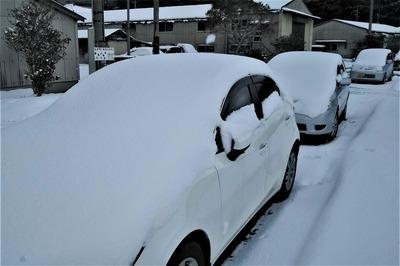 雪布団の車.jpg