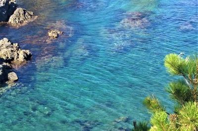 青く澄んだ海.jpg