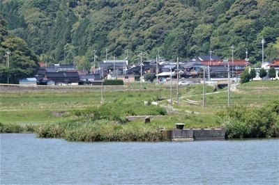 青海地区1.jpg