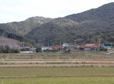青海地区2.jpg