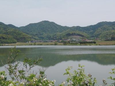 青海地区と青海湖.jpg
