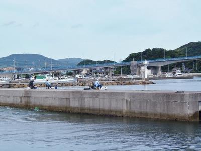 青海大橋と釣り師.jpg