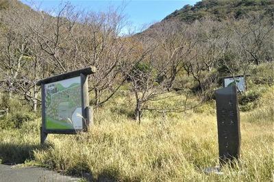青海島さくらの里1.jpg