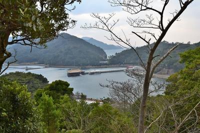 青海島さくらの里からの眺望1.jpg